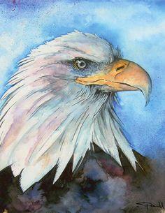 #WATERCOLOR #birds #Eagle