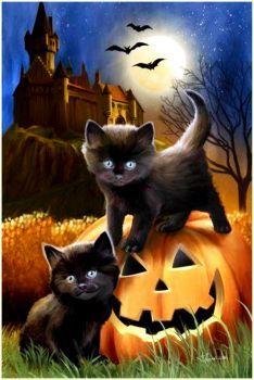 Kitten Pumpkin (96 pieces)
