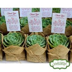 Wedding Give Aways Go Green Giveaways