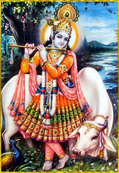 A Summary of the Srimad Bhagavata Mahapuranam ( ) Jai Shree Krishna, Radha Krishna Photo, Radha Krishna Love, Radhe Krishna, Hanuman, Lord Ganesha Paintings, Krishna Painting, Lord Krishna Images, Radha Krishna Images