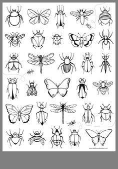 For yr 2 - 6 amber stone craft # Arte Sketchbook, Tattoo Flash Art, Insect Art, Mini Tattoos, Art Drawings Sketches, Drawing Designs, Doodle Art, Painted Rocks, Art Inspo