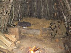 Woodland Wisdom: The Most Important Primitive Skill