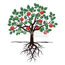 Search photos Category Plants and Flowers > Trees > Apple Tree in apple tree with roots drawing collection - ClipartXtras