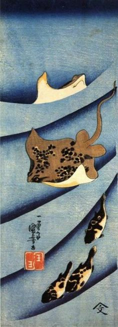 Untitled (stingray), from his series of water creatures by Japanese ukiyo-e painter & printmaker Utagawa Kuniyoshi 14 x 5 in. via kuniyoshi project Japanese Illustration, Illustration Art, Hokusai, Japanese Woodcut, Kuniyoshi, Art Japonais, Japanese Painting, Art Graphique, Japanese Prints