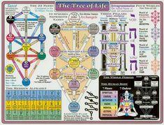 Cábala קּבּלּהּ: El Arbol de la Vida como representación del hombre