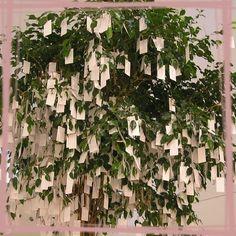 Un vrai arbre à souhait où les invités accrocheront leurs petits mots!