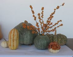 gourds are awesome.