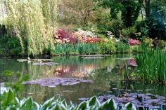 Chasing Claude Monet: Giverny and the art of living | The water lily pond in Monet's garden.