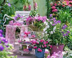 gardenmultflory