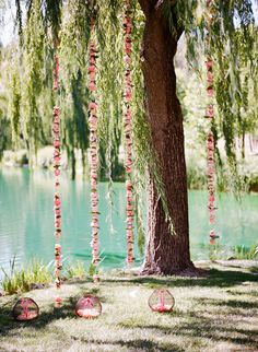 floral garlands hanging from the trees | Photography: Meg Smith Photography - megsmith.com, Florals by http://kathleendeerydesign.com  Read More: http://stylemepretty.com/2013/10/02/california-coral-wedding-from-meg-smith-photography/