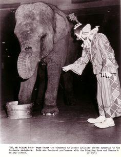 Ringling-Barnum Publicity Pictures #5