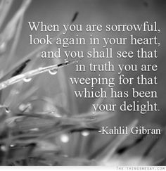 When you are sorrowful look again in your heart and you shall see that in truth you are weeping for that which has been your delight