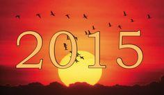 2015-rok