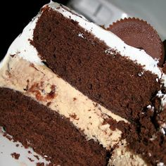 Peanut Butter Ice Cream Cake  I want this for my birthday