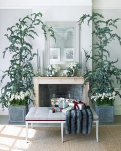 Cedar Arrangement with Paperwhites | Martha Stewart Living - Create an intimate woodland effect around your mantel with arching branches of fresh -- and wonderfully aromatic -- blue Atlas cedar.