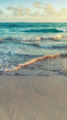 Phone wallpaper: plumeria flowers on the beach more. nice inspiration for a landscape quilt. more ocean beach, beach waves, the beach