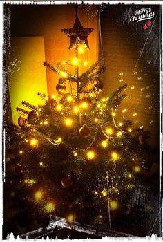 The same procedure as every year🎄🎅 Christmas Tree, Holiday Decor, Life, Home Decor, Great Pictures, Teal Christmas Tree, Decoration Home, Room Decor, Xmas Trees