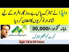 Company Job, Assistant Manager, Jobs In Pakistan, Last Date, Apply Online, Electric Power, Ali, How To Apply, Positivity