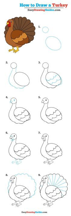 How to Draw a Turkey – Really Easy Drawing Tutorial Learn How to Draw a Turkey: Easy Step-by-Step Drawing Tutorial for Kids and Beginners. See the full tutorial at Easy Drawing Tutorial, Drawing Tutorials For Kids, Drawing For Beginners, Drawing For Kids, Art Tutorials, Drawing Ideas, Drawing Drawing, Thanksgiving Drawings, Thanksgiving Art