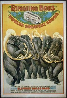 Shop Ringling Brothers Circus Elephant Brass Band Poster created by postershoppe. Old Circus, Circus Art, Circus Theme, Circus Train, Vintage Advertisements, Vintage Ads, Vintage Ephemera, Vintage Prints, Caricatures