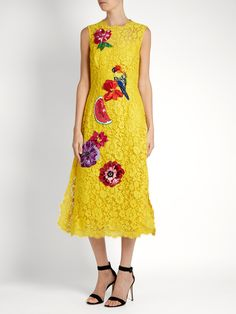 Embroidered cordonetto-lace dress | Dolce & Gabbana | MATCHESFASHION.COM AU$9,283
