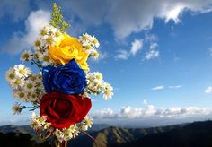 Yellow blue and red Flag Colors for Colombia Ecuator and Venezuela Chicano Art, Flag Colors, Red Flag, Graffiti Art, Christmas Tree Decorations, Wall Collage, Beautiful Landscapes, Fundraising, Floral Wreath