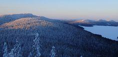 Kolin kansallispuisto - Luontoon.fi