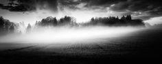 Misty -