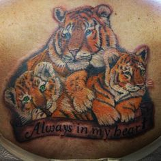 Tattooed by peter! Not finished yet, and still red cause its fresh. #centralbodyart #tbay #tbaytattoo #inked #tattoo #tigertattoo #realismtattoo #eternalink #backpiece #backtattoo