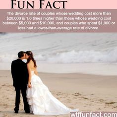 WTF Facts - Page 846 of 1304 - Funny, interesting, and weird facts Wtf Fun Facts, True Facts, Funny Facts, Random Facts, Crazy Facts, It's Funny, Random Things, Hilarious, The More You Know