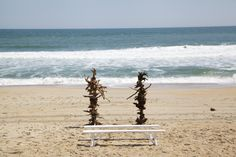 Sugar Snap Events set driftwood arbors on the Outer Bank's beach for this Intimate coastal Sanderling Ceremony