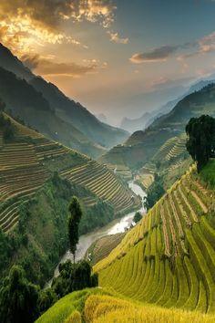 Mù Cang Chải, VietnamNutthavood Punpeng