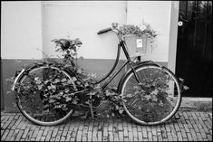 In the Nederland's you are never far from a bike.