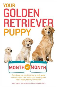 Free Your Golden Retriever Puppy Month by Month Everything You Need to Know at Each Stage to Ensure Your Cute and Playful Puppy Your Puppy Month by Month Terry Albert Debra Eldredge DVM 9781615648856 Books Epub Puppy Schedule, Golden Retriever Training, Dog Training Books, Training Tips, Retriever Puppy, Pet Care, Good Books, Big Books, Books Online