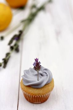 Lemon curd filled lavender cupcake with lavender honey frosting