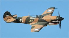 Curtiss P-40 Warhawk Flying Tiger