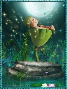 Good Night Gif, Good Night Image, Rosas Gif, Animiertes Gif, Fairies Photos, Good Night Greetings, Gif Photo, Good Night Sweet Dreams, Baby Fairy