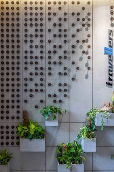 Space Planning Focused on Creating Visually Interconnected Office Space | Studio Infinity - The Architects Diary Big Plants, Indoor Plants, Office Setup, Office Decor, Copper Work, Glass Facades, Modern Aesthetics, Wood Texture, Contemporary Artists