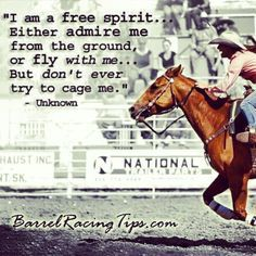 Rodeo Quotes, Equine Quotes, Cowboy Quotes, Cowgirl Quote, Equestrian Quotes, Horse Sayings, Equestrian Problems, Hunting Quotes, Western Quotes