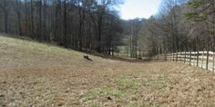 Beautiful pasture acreage located in Shiloh Development Equestrian community. This tract provides gentle to level terrain which is absolutely perfect for horses or your dream home in the mountains. Ample room for barn and work shop if you like. Great mountain views and easy access with no steep mountains to drive up. Whether you're a horse lover or not, Shiloh is a wonderful community to enjoy mountain living. The development backs up to National Forest Service property for easy access to…