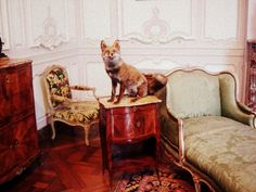 Explore Le Portillon's photos on Flickr. Le Portillon has uploaded 419 photos to Flickr.