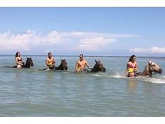 Horse back riding in the ocean in Jamaica! I faced that fear.