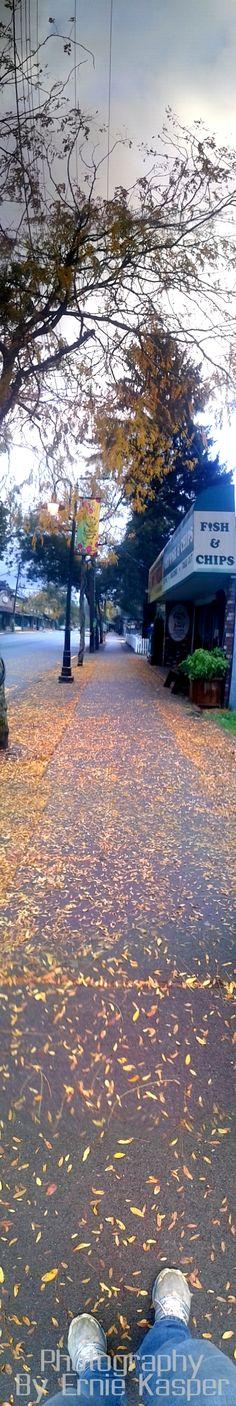 #fortlangley #walking #journey #fall #leaves #trees #beautiful #sidewalk
