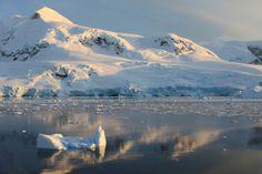 Andvord Bay, Antarctica. More on http://krillcruise.files.wordpress.com