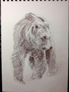 Dibujo oso. Sanguina sepia sobre papel guarro A4