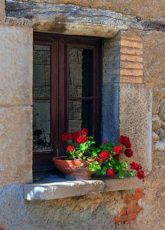 Beautiful Gardens, Beautiful Flowers, Beautiful Places, Window Art, Window Boxes, Old Windows, Windows And Doors, Flower Window, Red Geraniums