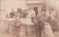 Cornwall: NEWLYN PACKING FISH FISHERMEN Real Photo card about 1910. in Collectables, Postcards, Topographical: British | eBay