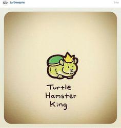 Hamster king Cute Turtle Drawings, Baby Animal Drawings, Cute Drawings, Sweet Turtles, Cute Turtles, Baby Turtles, Tiny Turtle, Turtle Love, Hamster Cartoon