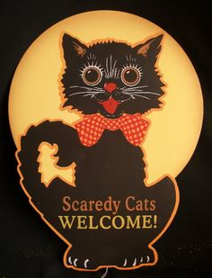Scaredy cats welcome, especially around Halloween