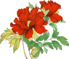 Hd Flowers, Botanical Flowers, Flowers Nature, Beautiful Flowers, Textile Design, Embroidery Designs, Online Clothes, Hazrat Ali, Digital